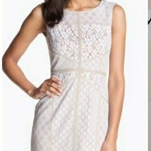 White/ tan lace dress Maggy London size 12